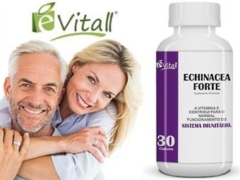 EQUINÁCEA FORTE 30 CÁPSULAS da é-Vitall: Frasco de Comprimidos para 30 Dias por 11.50€. Ideal para Reforçar o Seu Sistema Imunitário. PORTES INCLUÍDOS. ENVIO IMEDIATO!