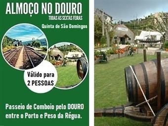 Passeio de Comboio pelo DOURO entre o Porto e Peso da Régua com Almoço para 2 Pessoas na Quinta de São Domingos por 69€.