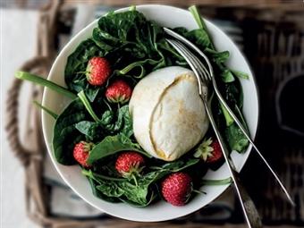 Coleção Receitas Facílimo: Salada de mozarela e morangos. Faça já download do eBook e áudio.