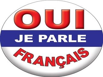 Curso Online de FRANCÊS Nível Avançado desde 5.90€ com Certificado.