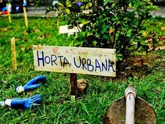 Curso Online HORTA URBANA ECOLÓGICA por 21.50€ no iLabora com Certificado. Cultive de Forma Inteligente e Sustentável.