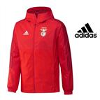 Adidas® Casaco Homem Benfica Oficial - XL