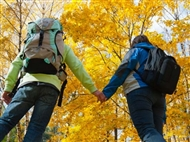 O cenário idílico do outono é um convite a caminhadas entre folhas caídas. Caminhe pela natureza, en