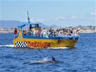 Passeio no Insónia ou Dreamer Junto ás Falésias. Veja os Golfinhos e as Grutas em ALBUFEIRA