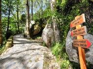 Passeios Pedestres Diurnos em Sintra, Beleza e Mistérios do Vale de Colares