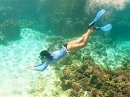 Passeio de Barco pela Costa Azul + Snorkeling para 1 Pessoa. Descubra o Mundo Subaquático!