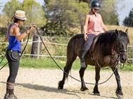 4 Aulas de Equitação na Coudelaria Resina Antunes no Centro Hípico Casal do Penedo em Sintra.