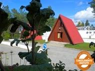 Camping Luso: Estadia em Bungalow de Madeira na Serra do Buçaco. Momentos Perfeitos na Natureza!