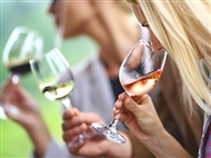 Curso Online de Enologia para 1 ou 2 Pessoas com a Sociedade Digital. Para os Apreciadores de Vinho.