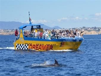 Passeio na Embarcação Insónia ou Dreamer Junto ás Falésias Algarvias. Veja os Golfinhos e as Grutas em ALBUFEIRA desde 25€. Desfrute do Momento!