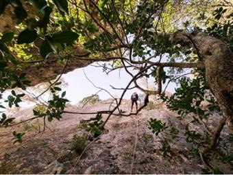 Actividades na Natureza: CIRCUITO de RAPPEL na Serra da Arrábida para 1, 2 ou 4 Pessoas desde 29€.